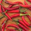 pepper-ring-of-fire