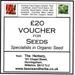 VOUCHER £20 second try